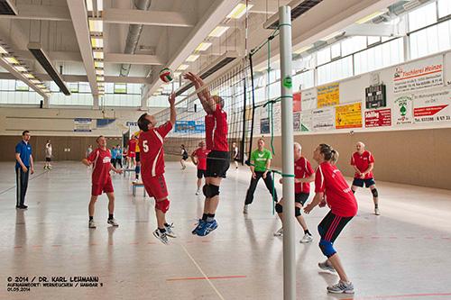 Volleyballturnier der Vereine 2014_19