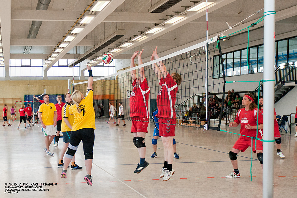 Volleyballturnier der Vereine 2015 (7)