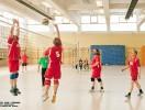 Volleyballturnier der Vereine 2016